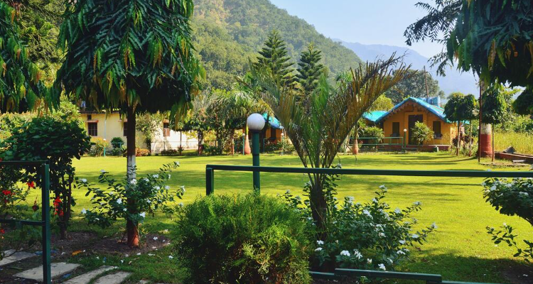 7 DAYS YOGA HOLIDAY RETREAT IN RISHIKESH, UTTARAKHAND , INDIA