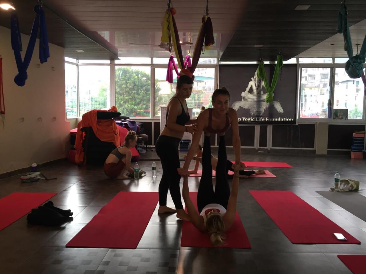 50 hours - 6 Night Hatha yoga Teacher traning course in Rishikesh india